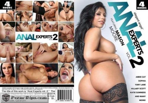 anaexperts2.jpg