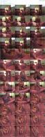 91708880_bonnynclyde_pantyhoseerotica-mp4.jpg