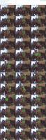91708919_bonnynclyde_stpattysday-mp4.jpg