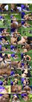 89796214_sexpicnic_diemannerverschlingendezigeunerin_05_640x480_2500k-mp4.jpg